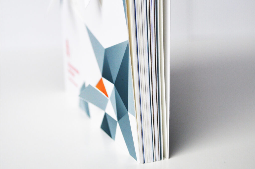 Each chapter in the book is in a different colour or type of paper.